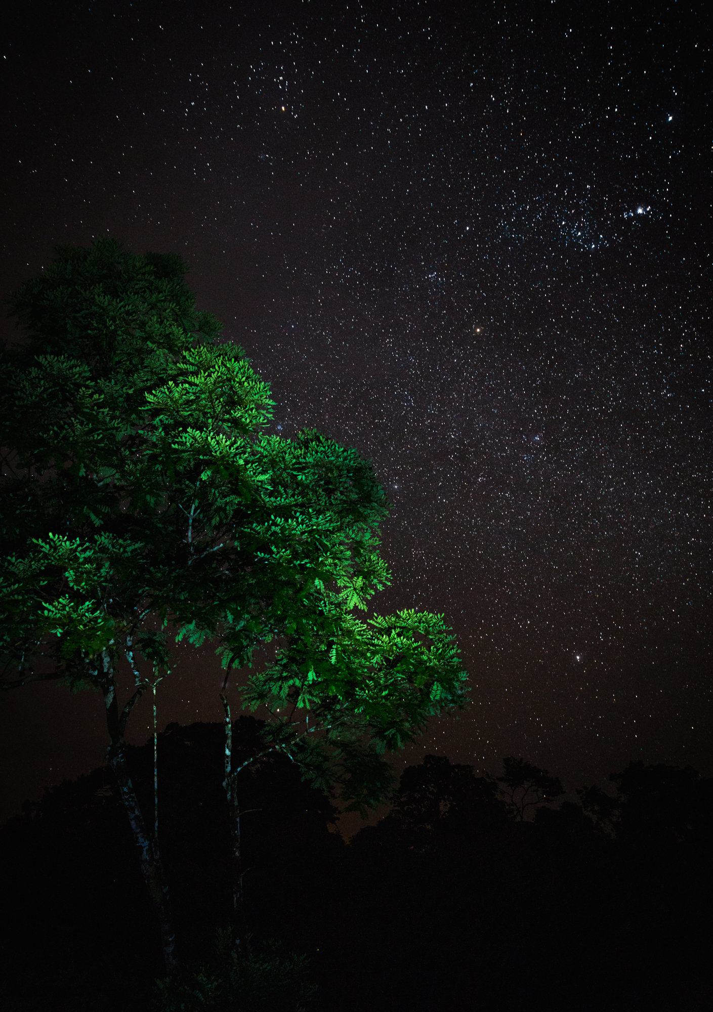 Sternenhimmel Ecuador Amazonas