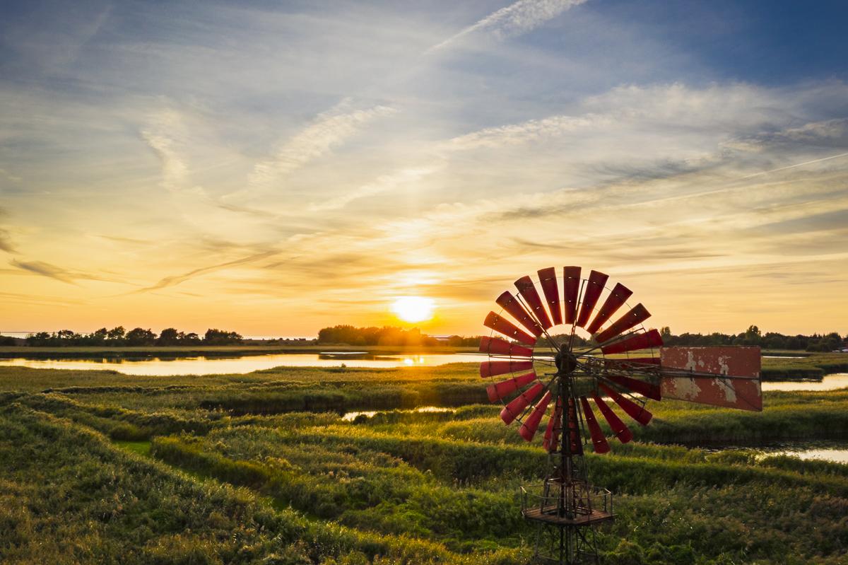 Windmühle Flügge