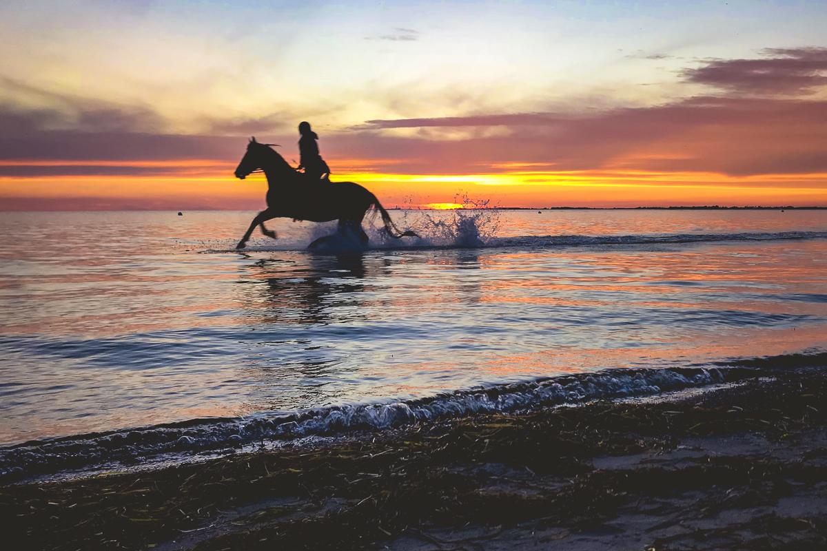 Reiter im Wasser Strukkamp Sonnenuntergang